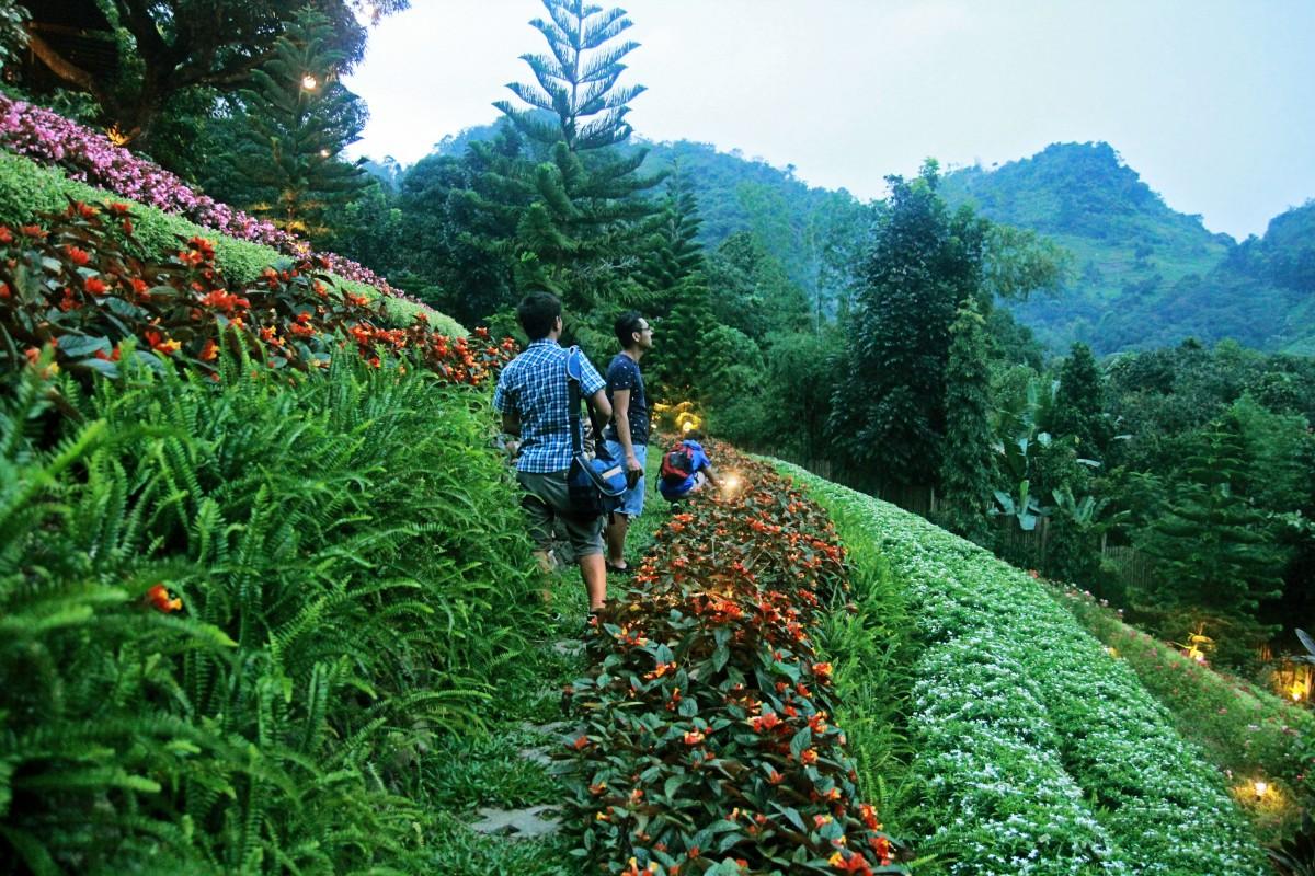 Terrazas De Flores Botanical Garden Busay S Romantic